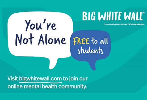 Graphical image with text 'Big White Wall. You're not alone'.