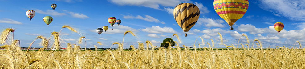 Hot air balloons against blue sky and cloud over a field of wheat