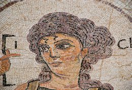 Atavistic mosaic of woman