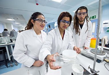 Students conducting a group experiment in the lab