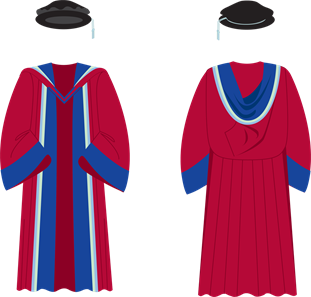 BSMS Doctorate