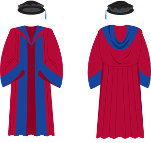 Brighton Doctorate gown