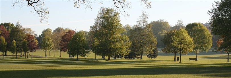 Panorama of autumnal trees in Preston Park