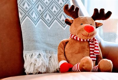 Rudolph photo by Tim Gouw