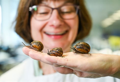 Dr Sarah Pitt and Snails on her hand