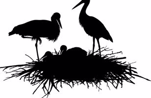 Black and white graphic image of storks