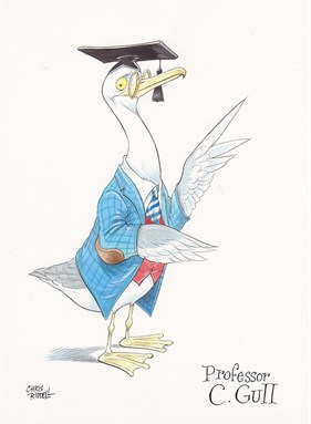 Professor C Gull - illustration by Chris Riddell